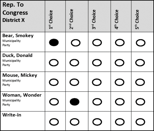 Voter 2 selected Smokey Bear as their first choice and Wonder Woman as their second choice and made no other selections. Both candidates were eliminated after multiple rounds of tabulation. Because Voter 2 did not rank any other candidates, they've exhausted their choices and the ballot is discarded.